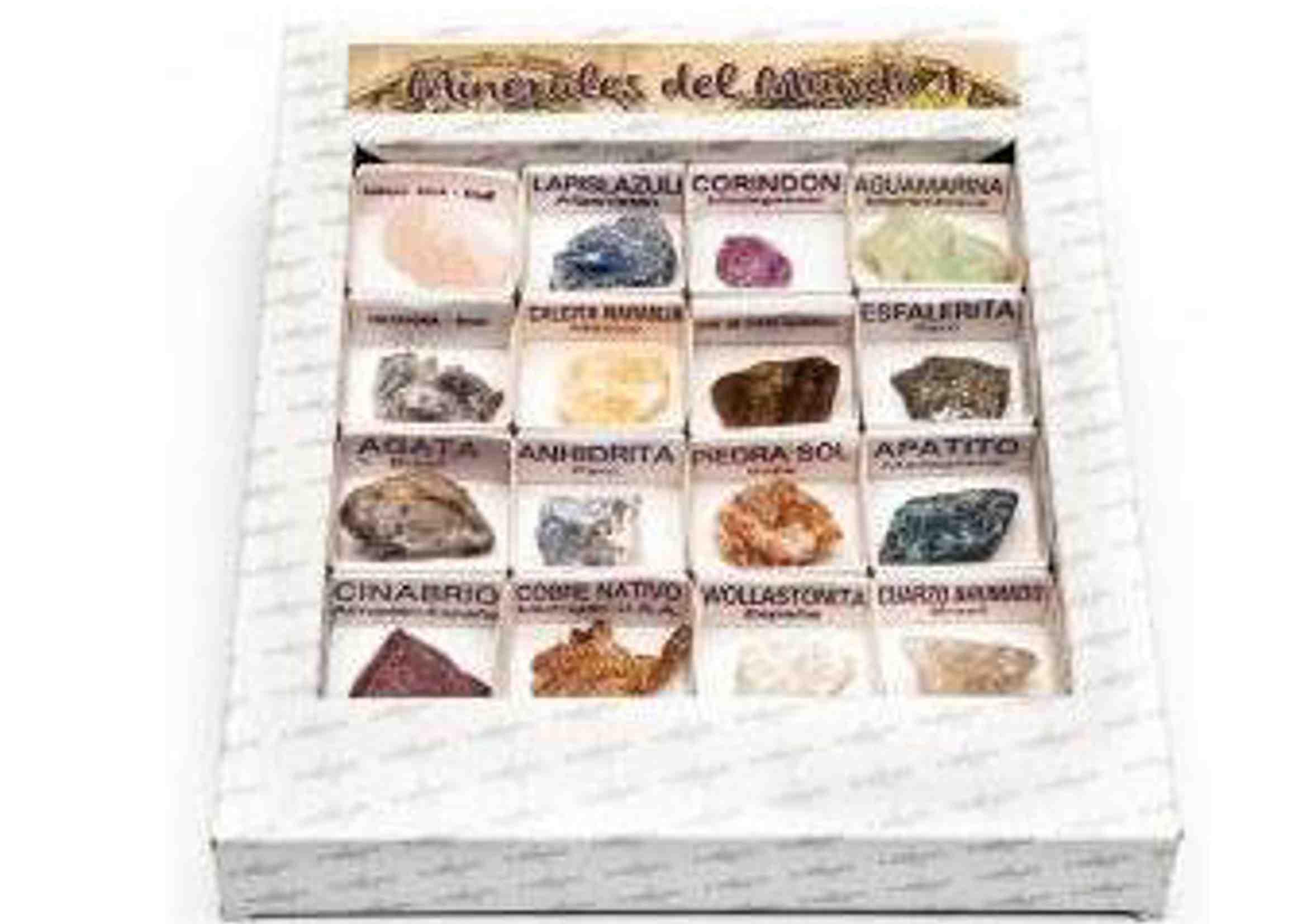caja de minerales del mundo colección